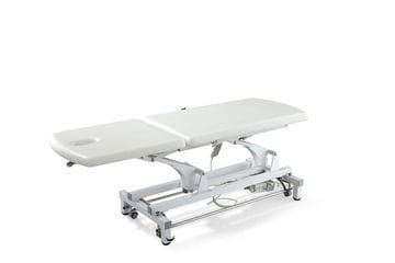 DP-S802 Two Section Treatment Couch