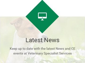 Veterinary Specialist Services Gold Coast and Brisbane Areas