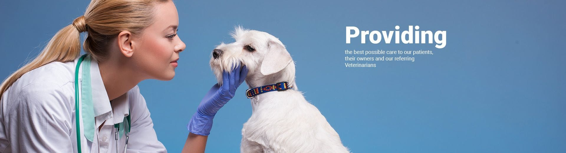 VSS provides the best possible care to our patients, owners and referring vets