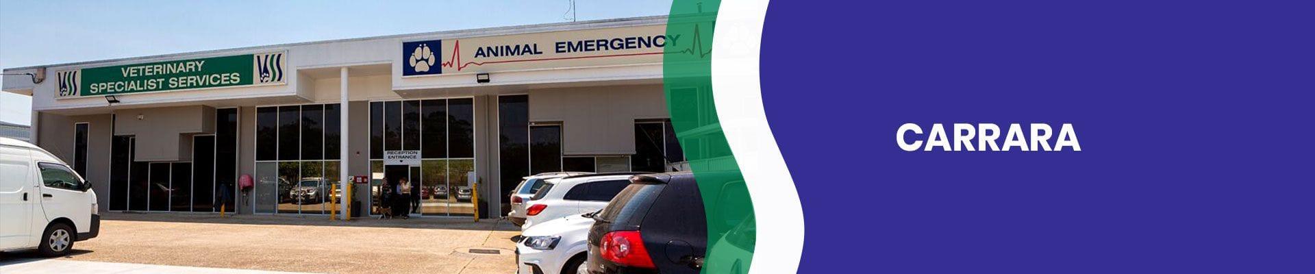 Carrara Vet Hospital   Veterinary Specialist Services