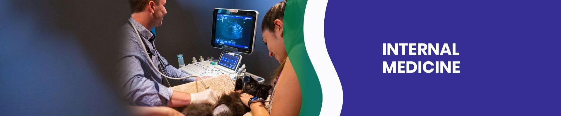 Internal MedicineAnimal Internal Medicine | Brisbane & Gold Coast Vets