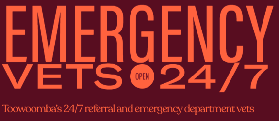 Toowoomba Vet | REDvets | 24/7 Emergency Vets