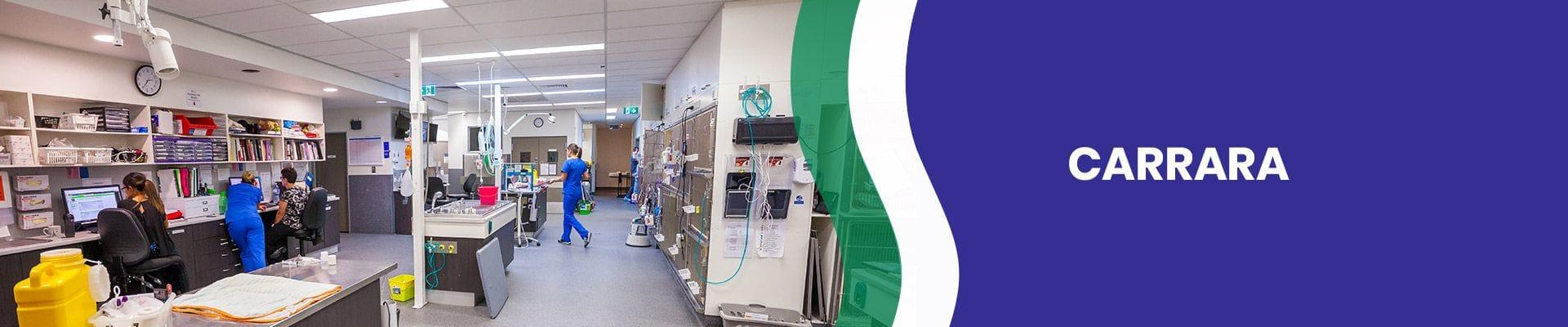 Carrara Vet Hospital | Veterinary Specialist Services