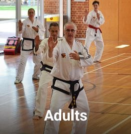 martial arts for adults