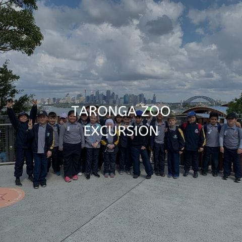 taronga zoo visit