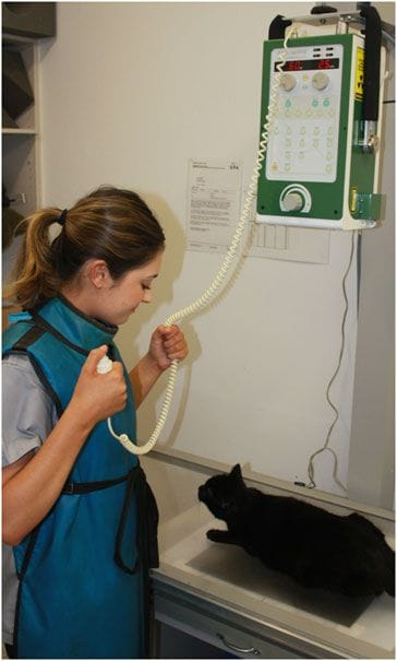 Terrigal Vet has a CR 35 VET digital processor allowing x-ray images to be ready in minutes which does not dealy treatment