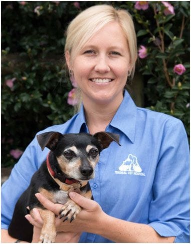 Meet Tracey, a Veterinary Nurse of Terrigal Vet