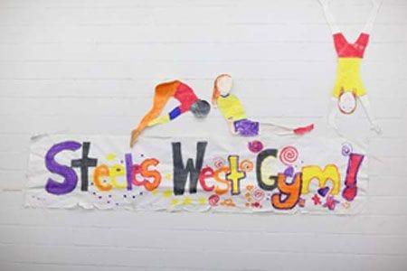 Steeles West Gym - trix Acro Gym