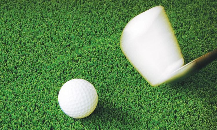Synthetic Grass & Rubber Surfaces | Golf Course