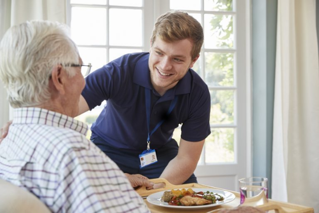 In Home Nursing Care Plan For Orthopedic Senior Patients