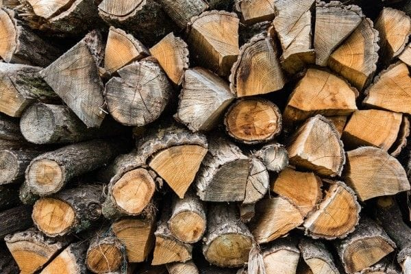 Best Firewood Types to Burn | Northern Cookstoves and Heaters
