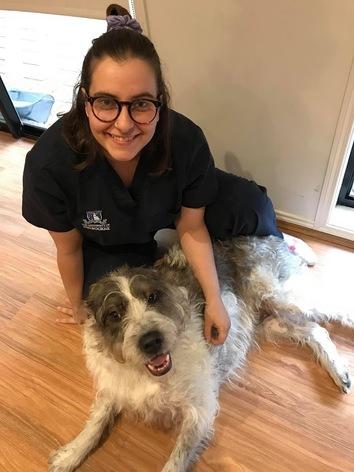 Alexandra, vet student and cattery attendant