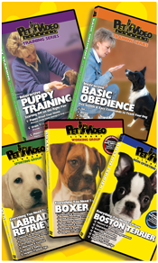 PET VIDEO LIBRARY