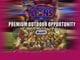 Brisbane Lions - Sponsorship Presentation