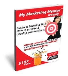 My Marketing Mentor - Marketplace Ezine Advertisement