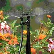 Micro Sprinklers & Sprays
