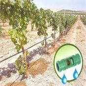 Drip Irrigation & Dripline