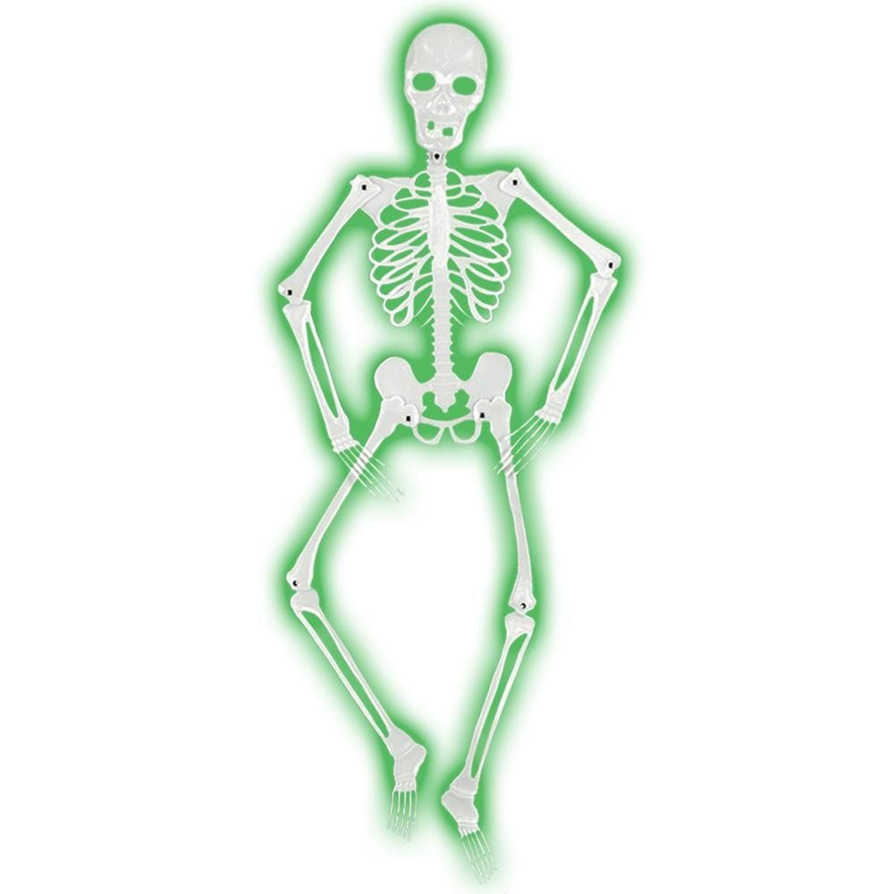 Glow in the Dark Skeleton 1M