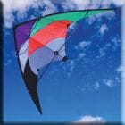 Twister Stunt Kite