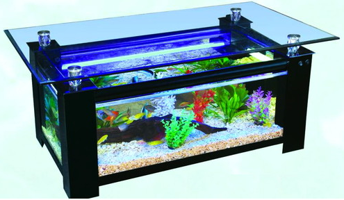 Rectangular Coffee Table Glass Fish tank. LAST 2 LEFT!!!