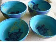 group of turtle bowls.