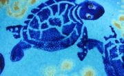 Closeup of Turtle on centre of plate.  Cobalt on Turquoise glaze.