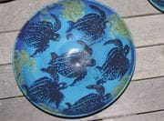 Turtle bowl in Turquoise.