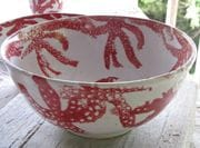 Red Coral deep bowl.