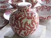 Red coral Jar