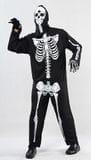Adult Skeleton  -  $40