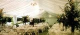BLACK AND WHITE MARQUEE SILK LINED