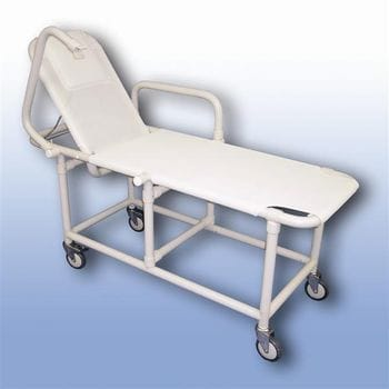 Mobile shower recliner