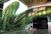 Fixtech Fixit Grip FMP100 bonding Multipanel PU board borders to this wall living green wall.